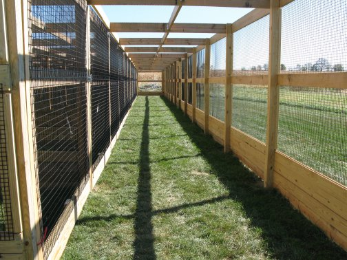 Gamefowl breeding pens design